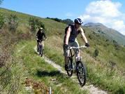 mountain_bike1s